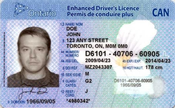 Buy Canadian Drivers License