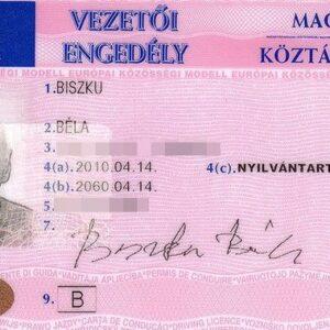 Buy Hungarian Drivers License