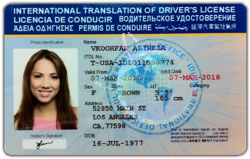 Buy International Drivers License