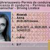 Buy Swiss Driving License