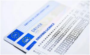 Fake driving license online