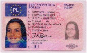 Polish driving license